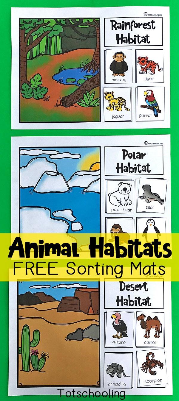Animal Habitats Sorting Mats   Totschooling - Toddler, Preschool - Free Printable Animal X Rays