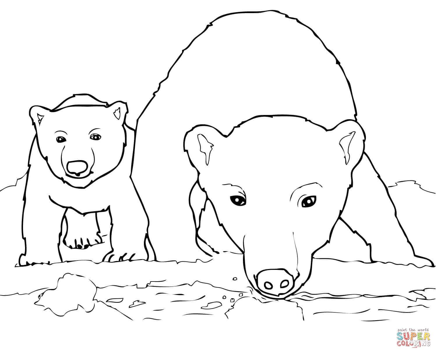 Curious Polar Bear Mother And Cub Coloring Page | Free Printable - Polar Bear Printable Pictures Free