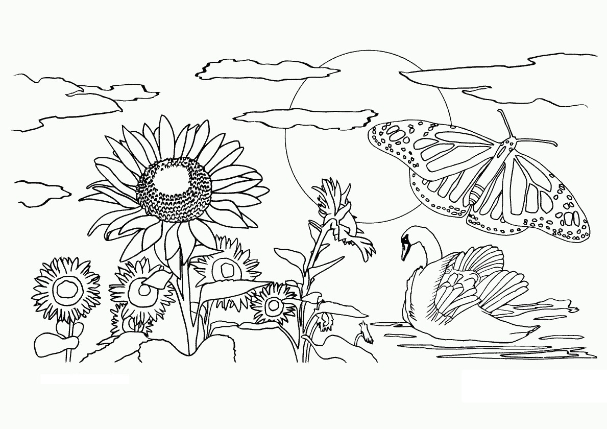 Free Printable Nature Coloring Pages For Kids - Best Coloring Pages - Free Printable Nature Coloring Pages