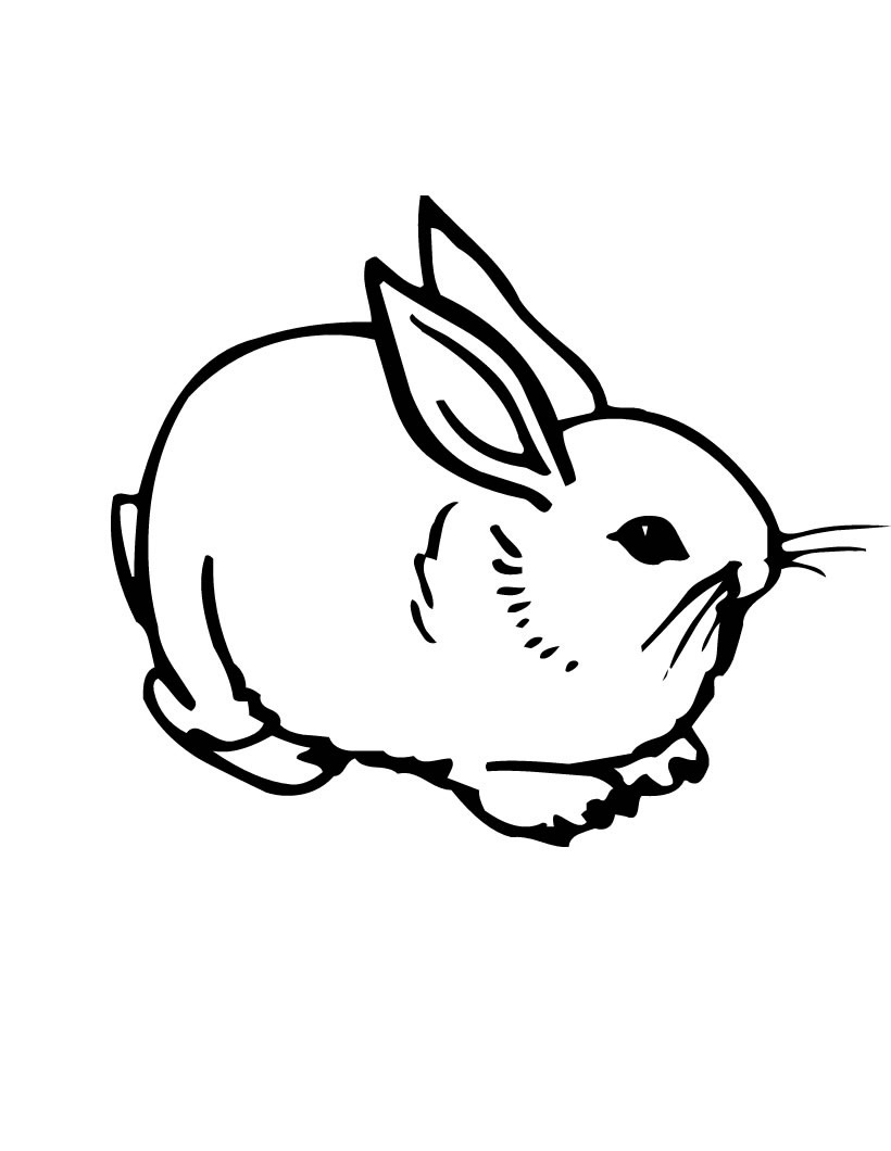 Free Printable Rabbit Coloring Pages For Kids - Free Printable Bunny Pictures