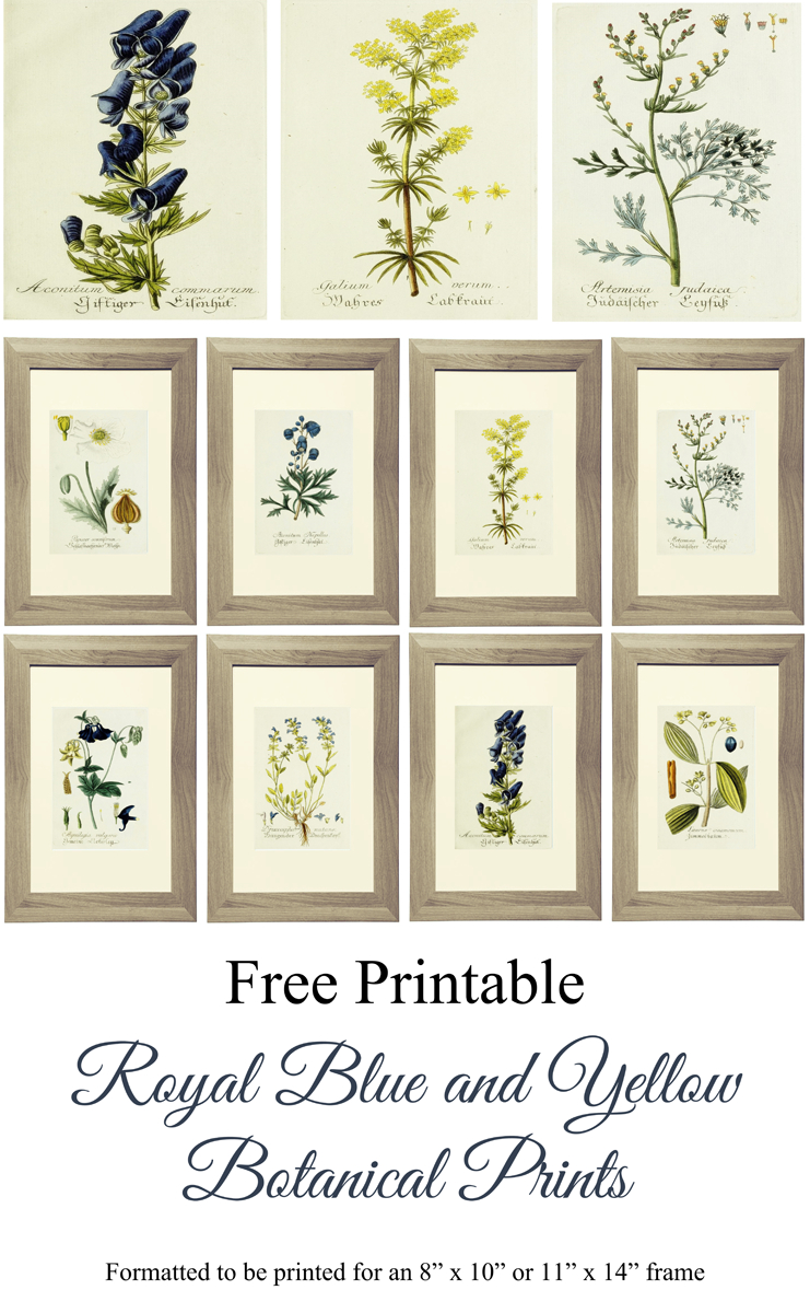 Free Printable Royal Blue And Yellow Botanical Art | Lg Limitless - Free Printable Artwork To Frame