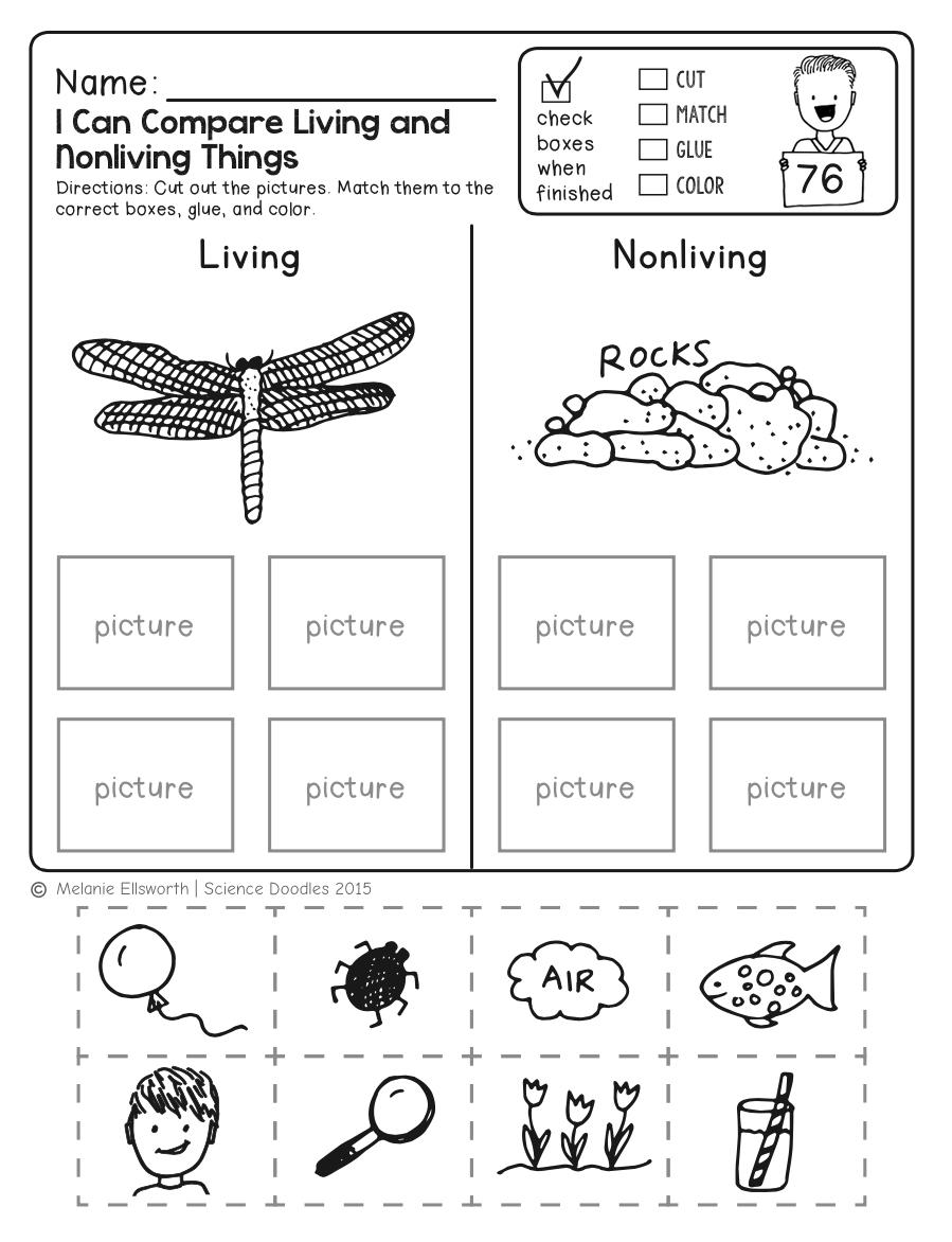 Freebie! No-Prep Kindergarten Science Doodle Printables | T E A C H - Free Printable Science Worksheets For Grade 2