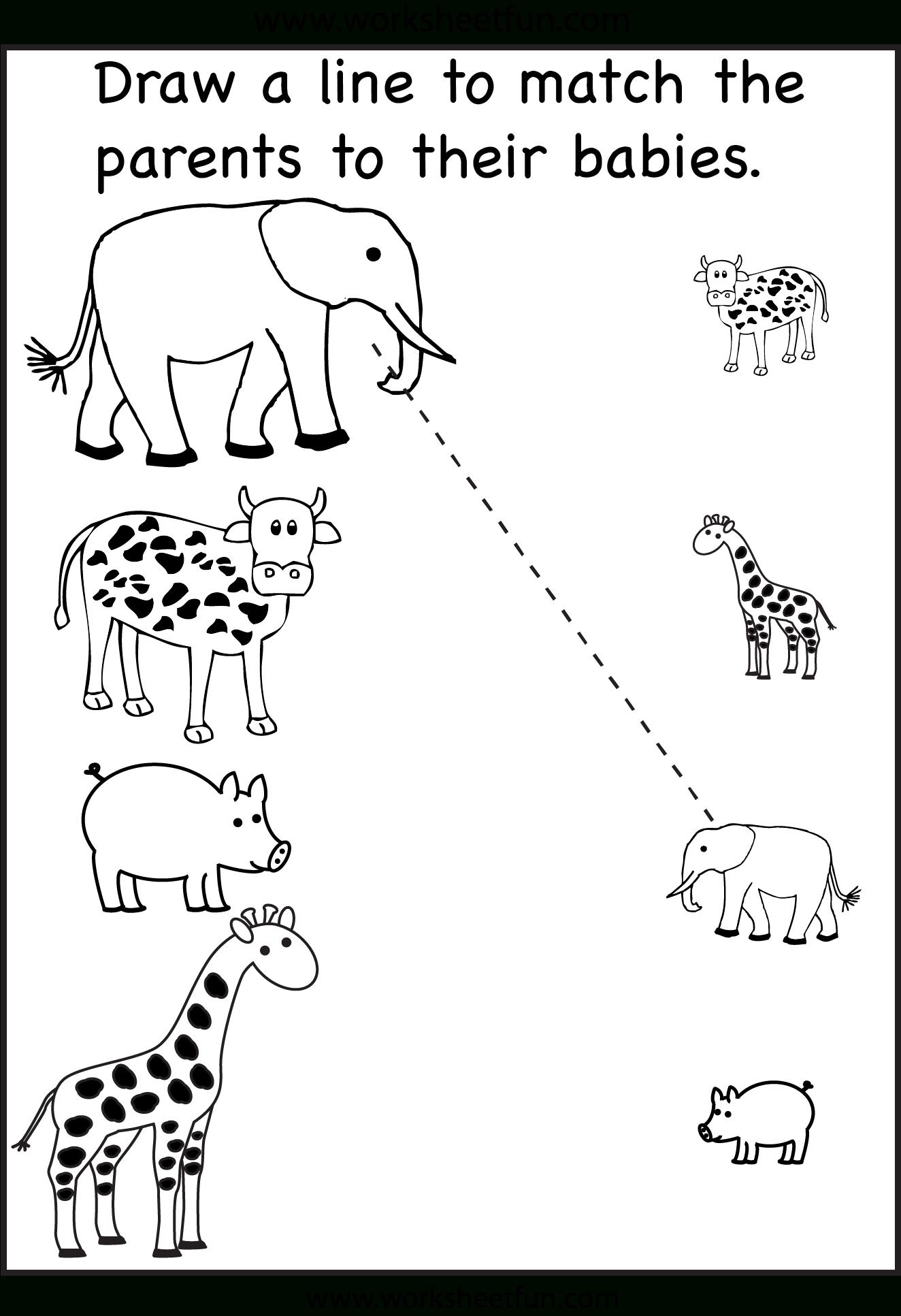 Pinzhenya Ilushevitch On Animals   Preschool Worksheets, Toddler - Free Printable Worksheets For 3 Year Olds