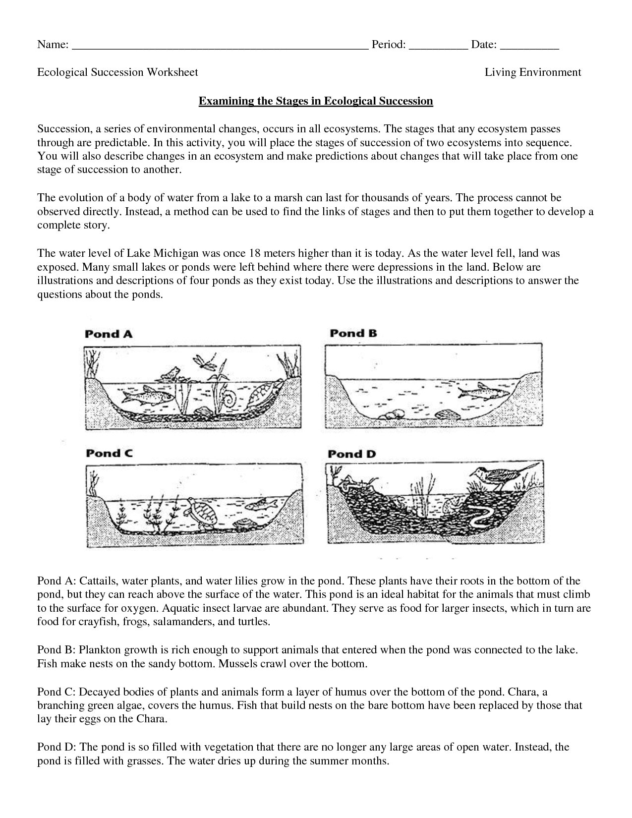 Science Worksheets Ecosystem | Biology Worksheet - Get Now Doc - 9Th Grade Science Worksheets Free Printable