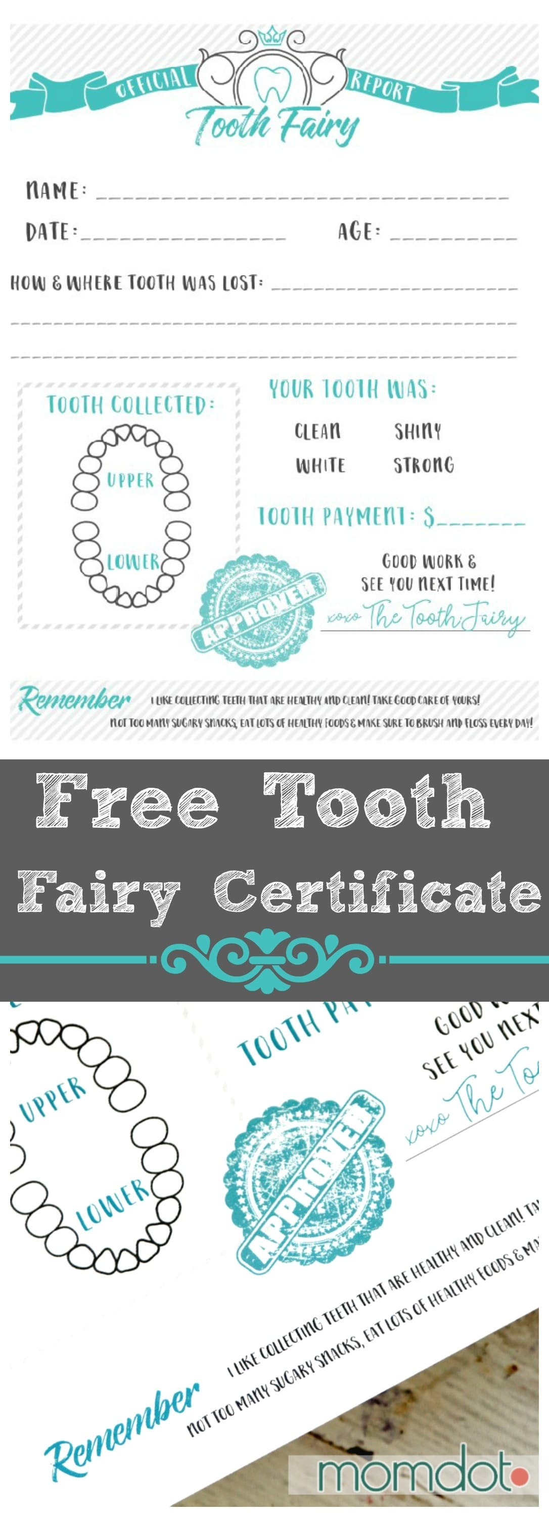 Tooth Fairy Free Printable Certificate - Free Printable Tooth Fairy Certificate