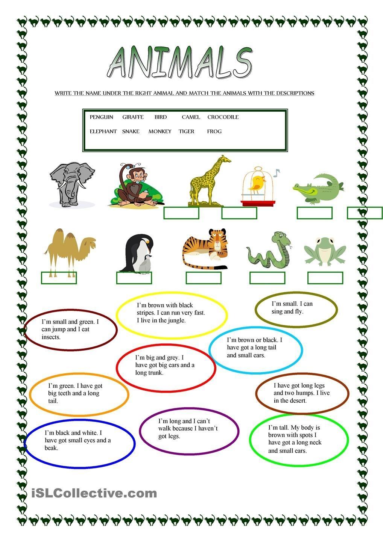 Animals   Free Esl Worksheets   Teachers Resources   Animal - Free Printable Esl Resources
