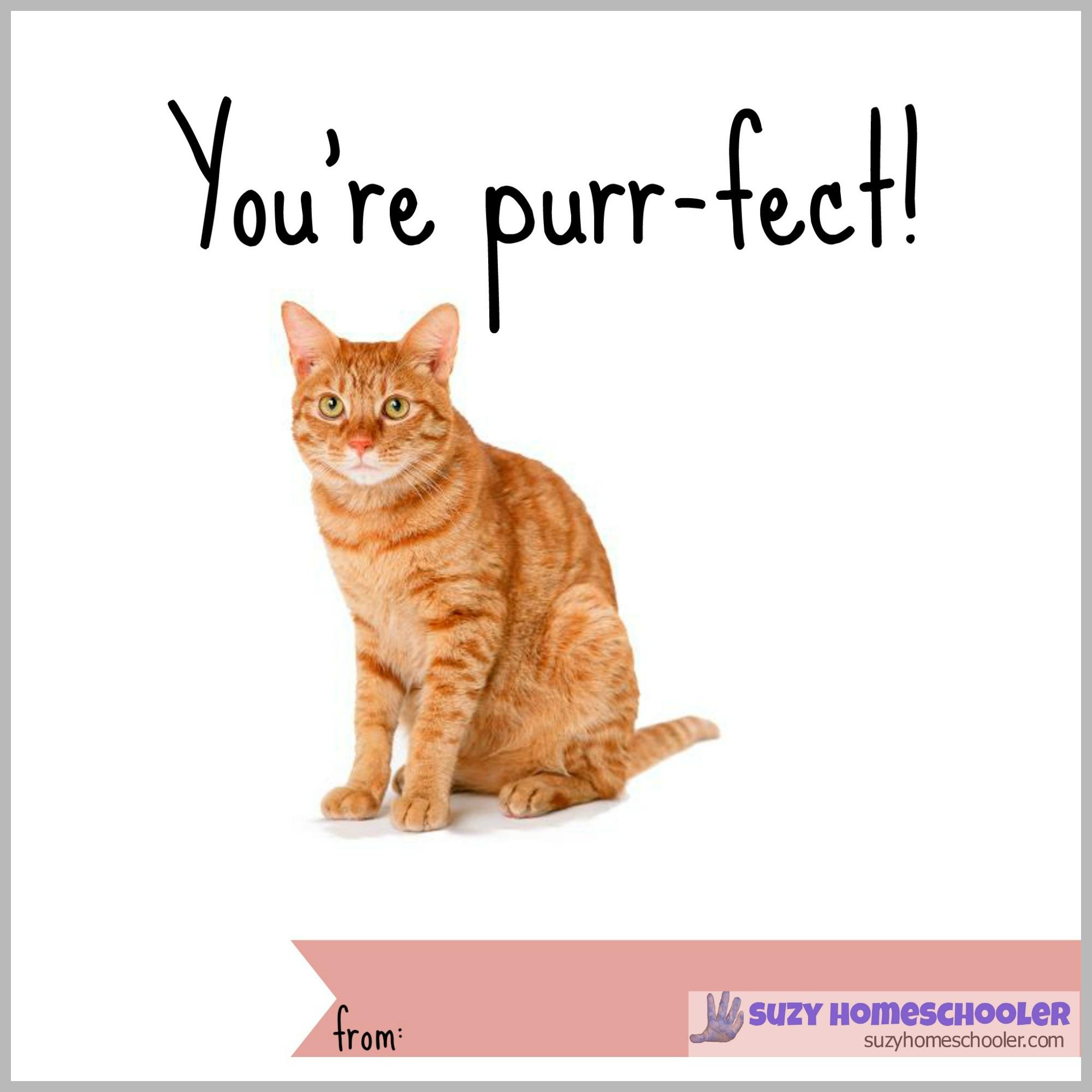 Free Printable Cat Fact Valentines   Suzy Homeschooler - Free Printable Cat Valentine Cards