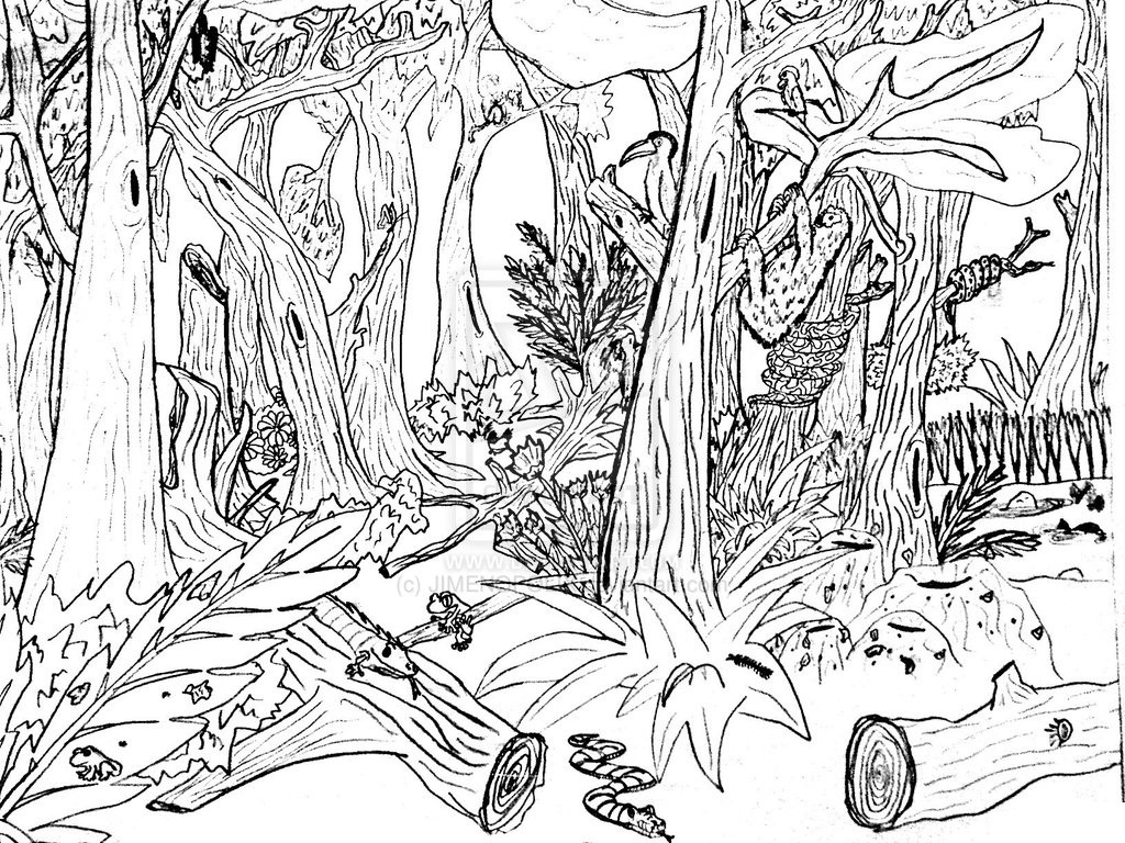 Free Printable Nature Coloring Pages For Kids - Best Coloring Pages - Free Printable Nature Coloring Pages For Adults