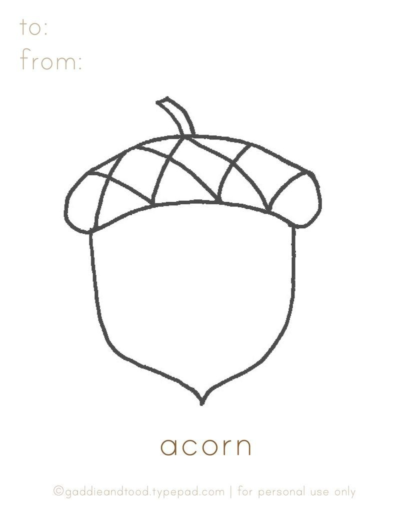 Gaddieandtood.typepad Free - Printable Acorn Coloring Page | For - Acorn Template Free Printable